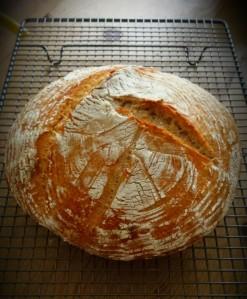 E5 Bakehouse home baking